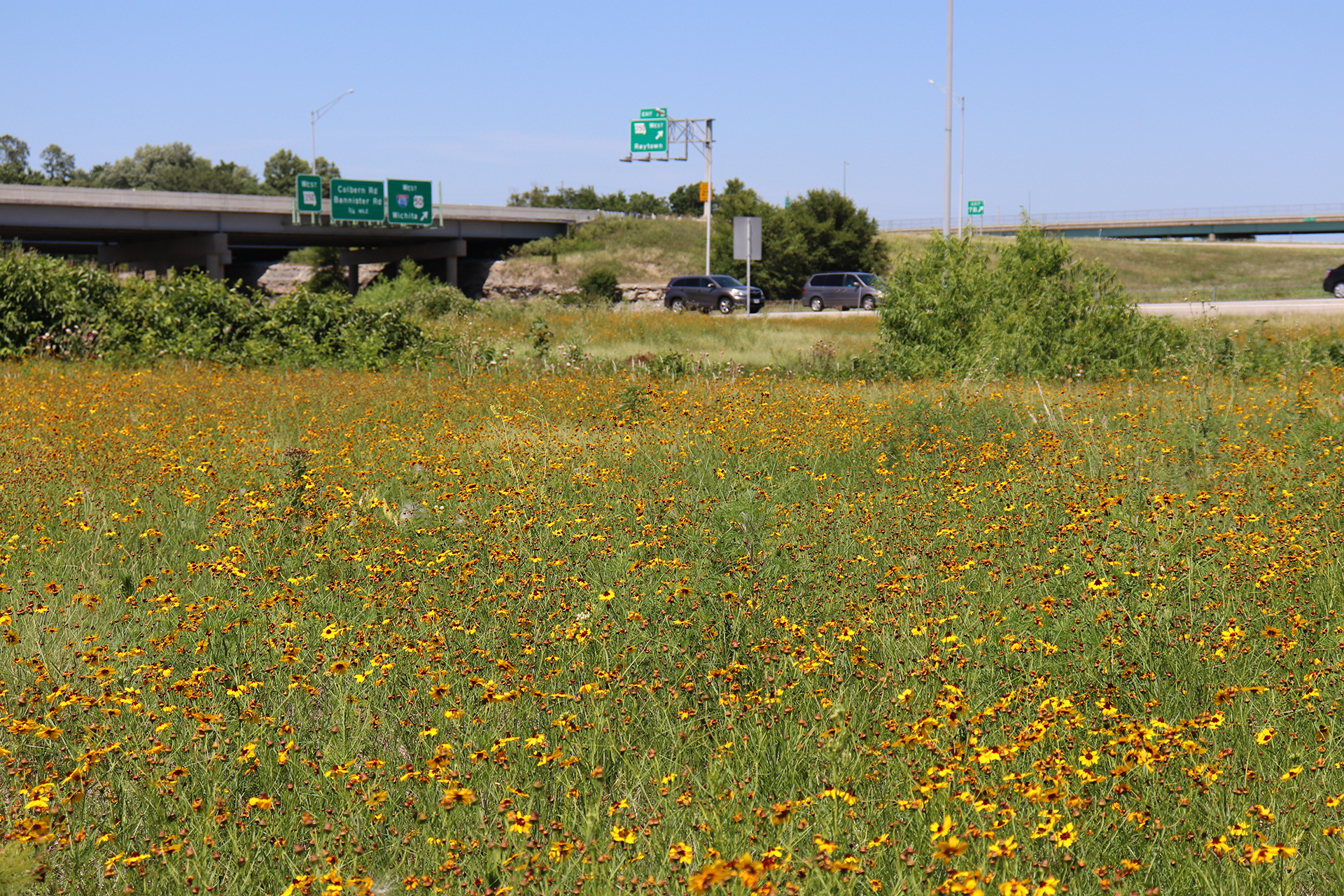 Lee's Summit Roadside Beautification Project Close to Completion