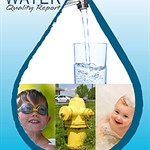 The 2015 Lee's Summit Water Quality Report now available online