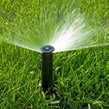 Generic image of a sprinkler head spraying water on green grass lawn.